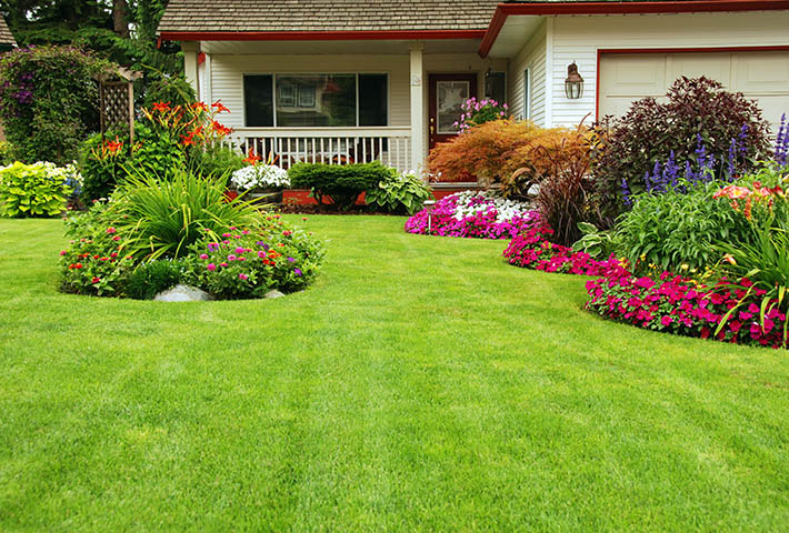 clean beautiful lawn garden