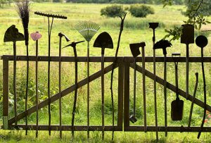 9 most essential gardening tools you must have